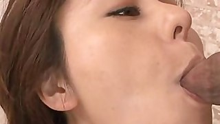 licking japanese bbw blowjob beauty